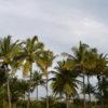 coqueira_praia_hotel5