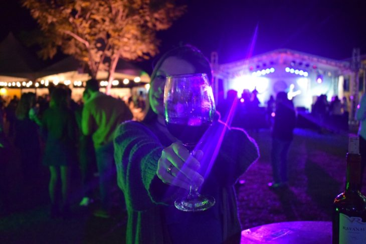 Festival Castelo Wine Beer - capa