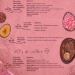 chocolateria br 2