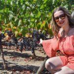 viña vik wine – 5