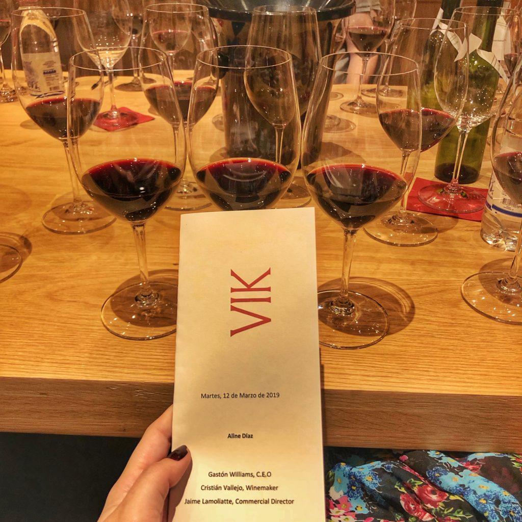 viña vik wine degustação – 6