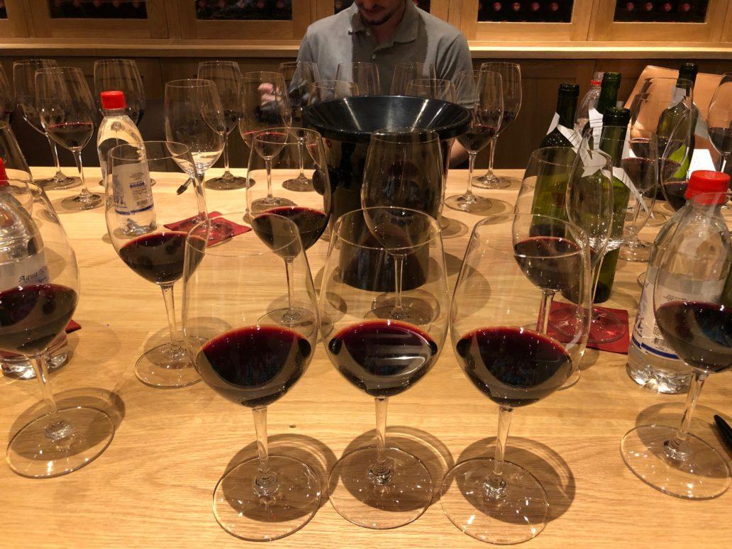 viña vik wine degustação – 8